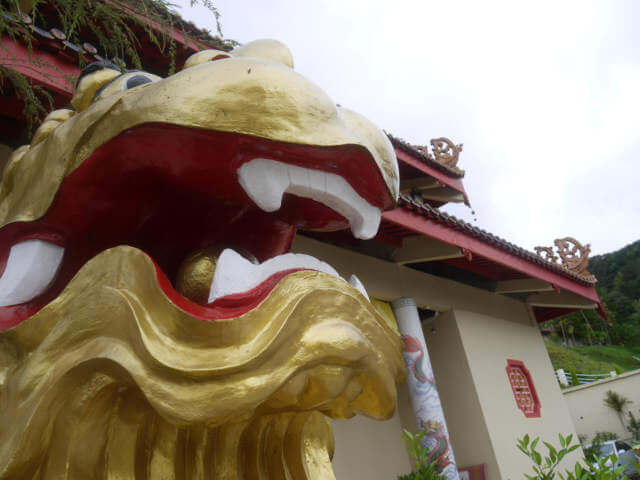tea lion statue at temple
