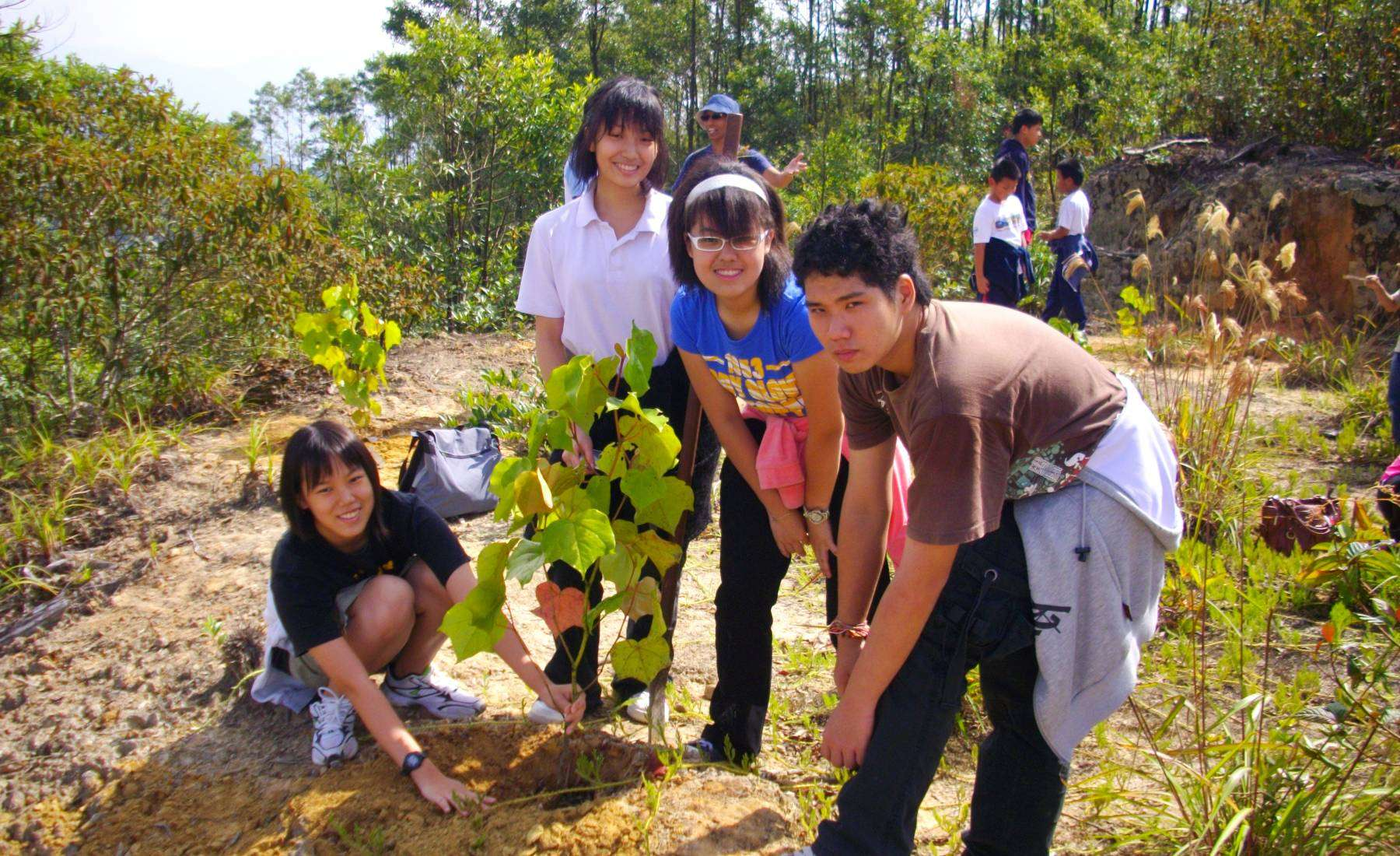 Reforestation on All About Soil Activities